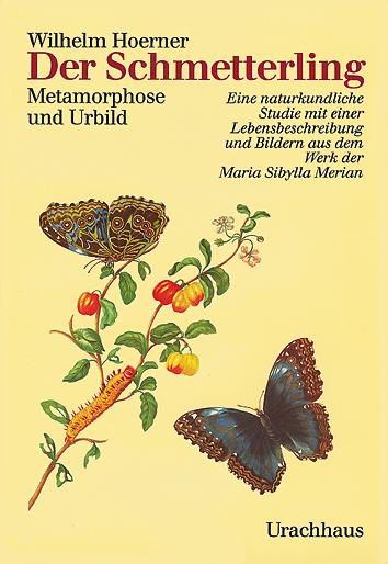 Der Schmetterling  Wilhelm Hoerner