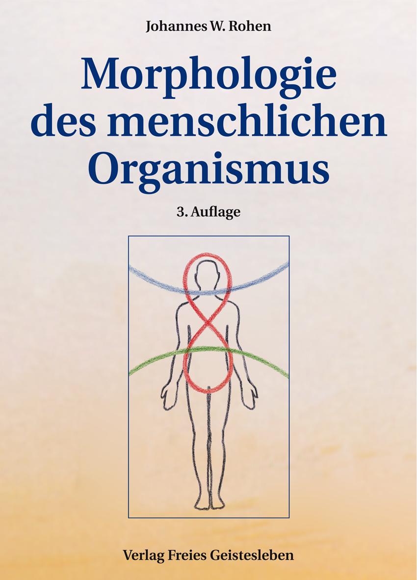 Morphologie des menschlichen Organismus | Verlag Freies Geistesleben